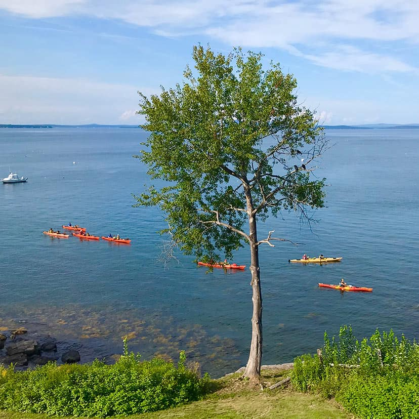 Kayaking in Bar Harbor ME